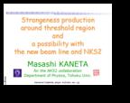 2005_07_28_Masashi_Kaneta_LEPS_SPring-8_Workshop_s.png